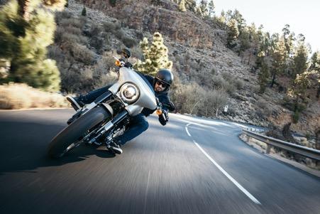 The Harley Davidson